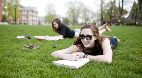 Essays for the procrastinators